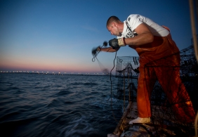 Tim Lindsay, Jr. throws out a crab pot as dawn breaks near the Monitor-Merrimac Bridge Tunnel on Wednesday. Lindsay, the first mate aboard the Miss Nina of Poquoson, grew up crabbing with family on the Hampton Roads waterways.