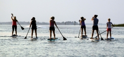 Paddle boarders glide through the water on their boards near Whitehouse Cove Marina in Poquoson during a recent Tuesday evening. paddle board fitness class that teaches strength training exercises and basic yoga poses to participants.