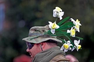 daffodilFestival2
