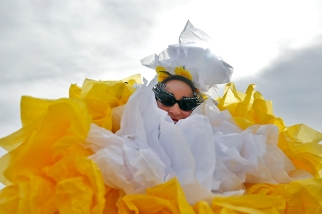 daffodilFestival7