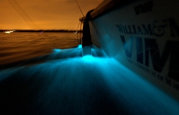 The phytoplankton known as dinoflagellates bioluminescent as a Virginia Institute of Marine Science boat drops a net into the York River Tuesday night. (Rob Ostermaier)