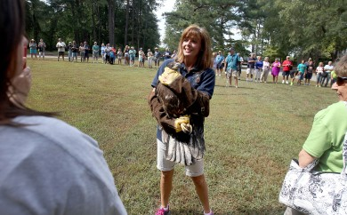 A crowd gathered at Chippokes Plantation State Park gets a close look at a young bald eagle Thursday prior to it's release. The eagle was rehabilitated after an injury by The Wildlife Center of Virginia. (Rob Ostermaier)