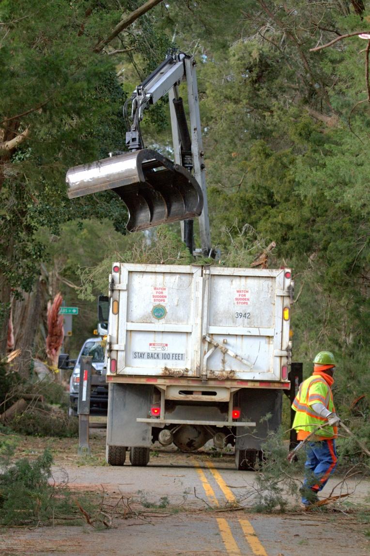 DP Clean up on Cedar La. Area