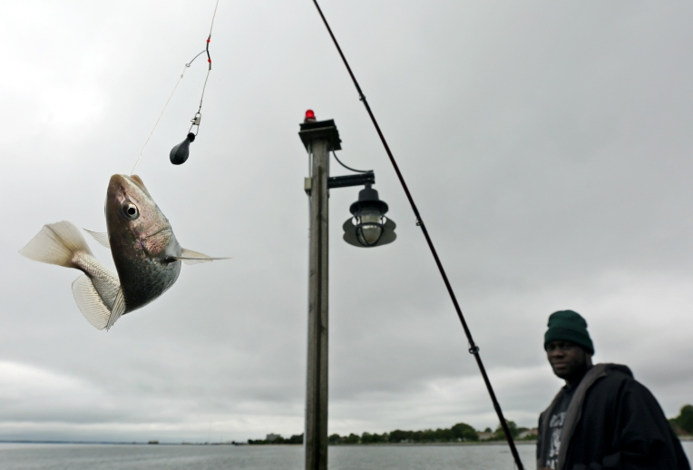 Fishing at 16th Street Pier