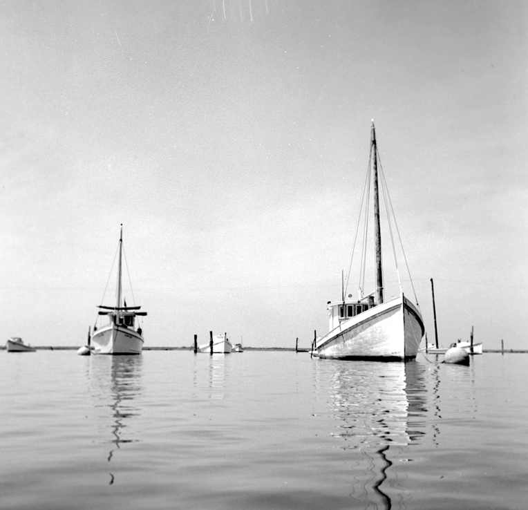 Tangier Island archive 1956