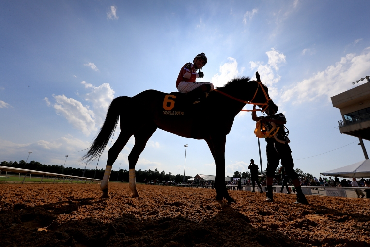 Colonial Downs Reopoens for Horse Racing